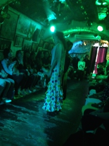 Not the best photo but here is my view during the Flamenco show. The band is all the way in the back.