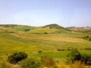 Looks at that landscape.